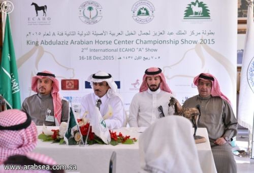 327 جوادًا تتنافس على بطولة الخيل العربيةً الأصيلة