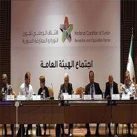 """الائتلاف السوري المعارض يقر وثيقة """"التسوية السياسية"""""""